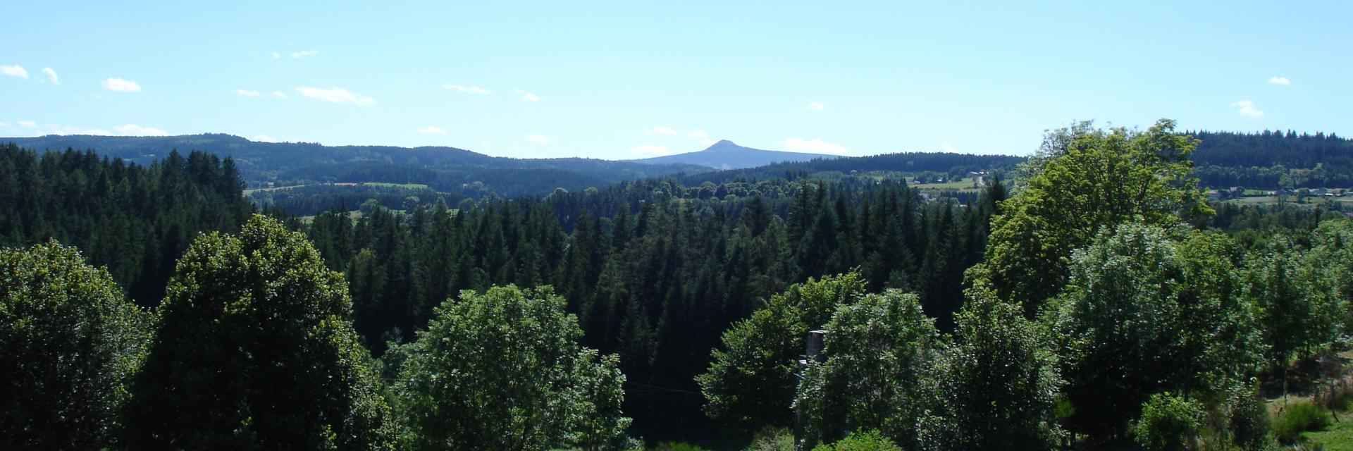 Pic volcanique du Lizieux